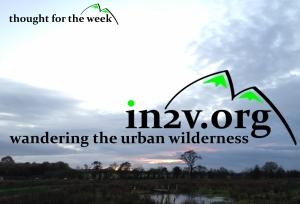 wandering the urban wilderness